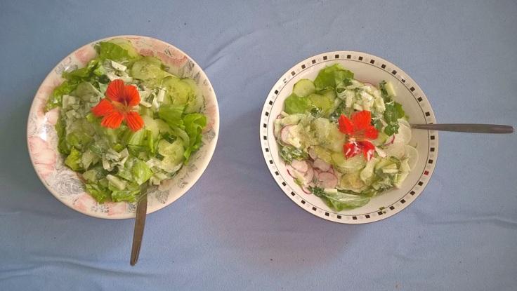 Lecker Salat.jpg
