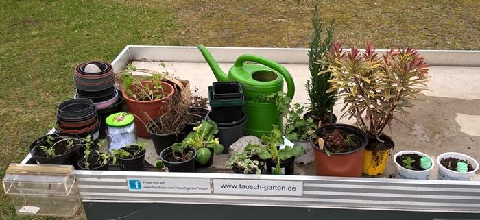 1_PflanzenTausch Tisch